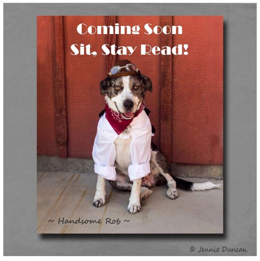 Sit, Stay Read!