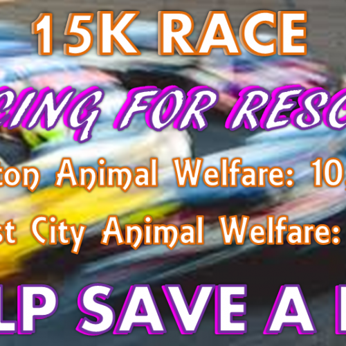 Racing for Rescue