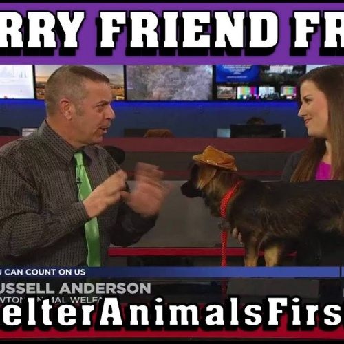 Meet Willie Nelson at Furry Friend Friday