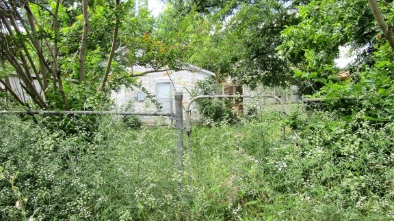 Overgrown yard in Lawton