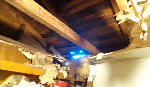 hole in ceiling and roof